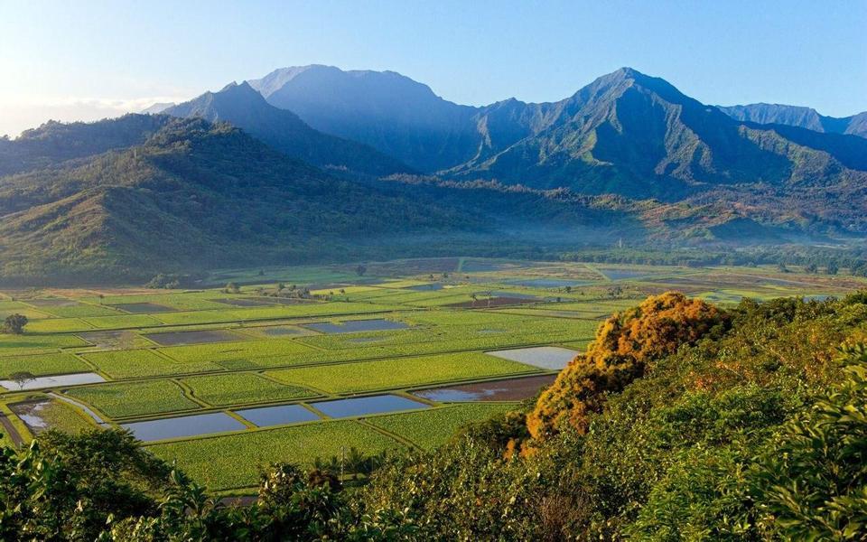 下一篇: 夏威夷风景高清电脑壁纸 上一篇: 可爱