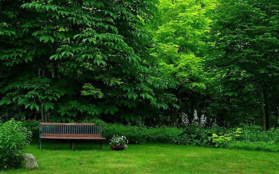 绿色风景壁纸唯美护眼桌面图片 上一篇: 风景壁纸