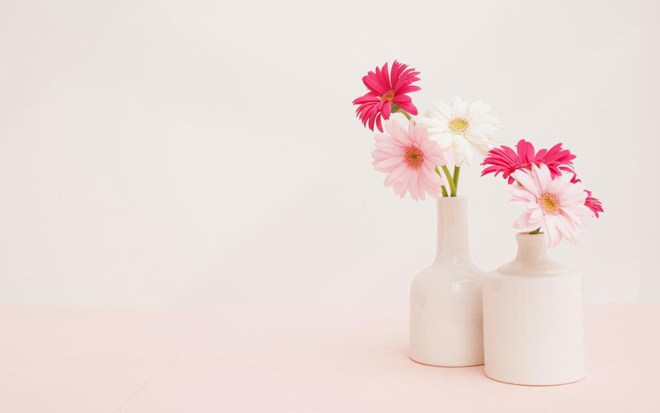 风景电脑壁纸 上一篇: 唯美小清新花朵高清风景
