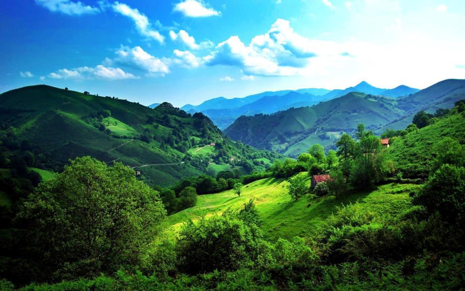 绿色养眼自然风景桌面壁纸-电脑桌面壁纸_壁纸大全