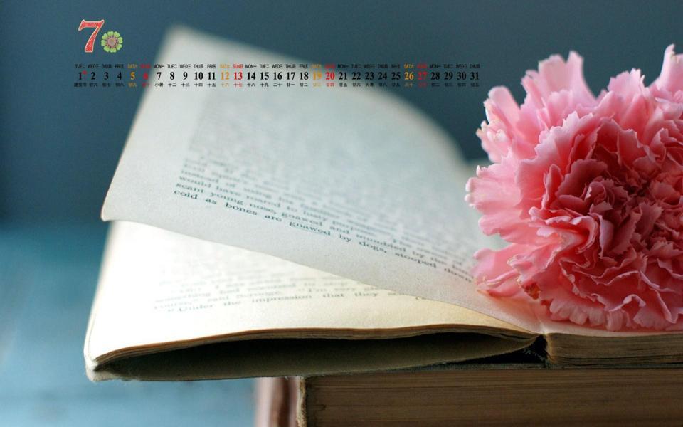 高清7月月历桌面壁纸小清新书本花朵