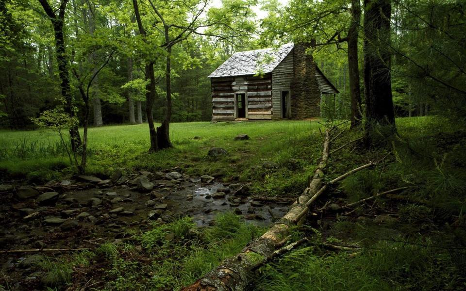 绿色林中小屋养眼风景壁纸