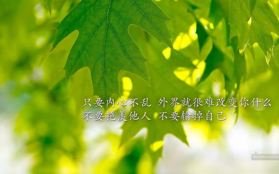 绿叶护眼文字控励志宽屏桌面壁纸图片