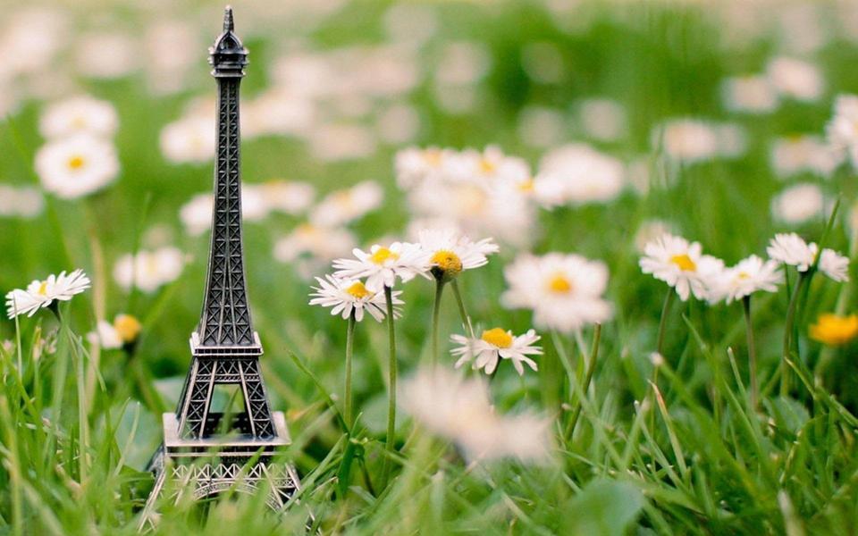 可爱图片,可爱图片大全,分享漂亮可爱唯美意境图片,小动物萌物可爱