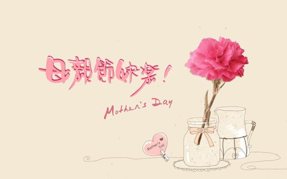 康乃馨唯美花朵图片母亲节简约壁纸