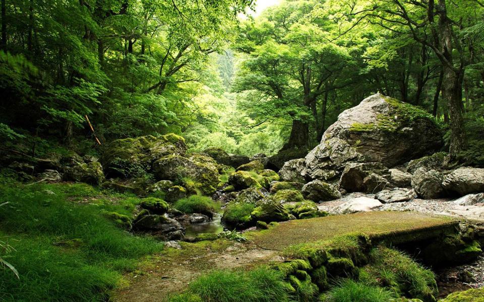 岩石,小溪,自然风景桌面壁纸-电脑桌面壁纸_壁纸大全