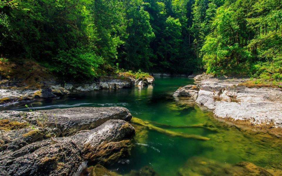 山脚下森林小溪河流自然风景壁纸图片