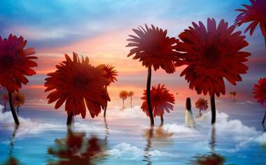 唯美花朵意境图片高清大图