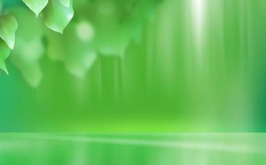 小清新绿色养眼壁纸