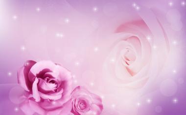梦幻玫瑰花高清桌面壁纸
