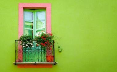 漂亮的窗台花艺桌面壁纸