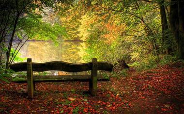 郊外湖畔秋天美景桌面壁纸