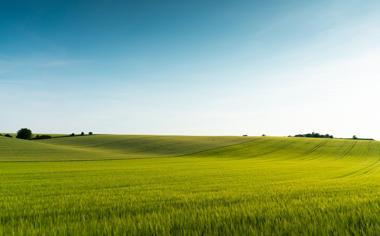 美丽的草原风光壁纸