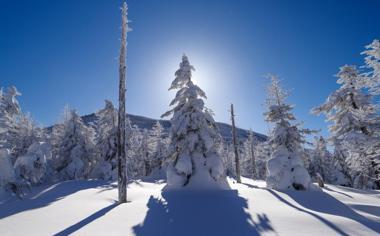 白茫茫的冬季自然风景桌面壁纸