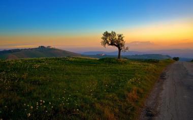 落日黄昏下蓝色天空风景壁纸